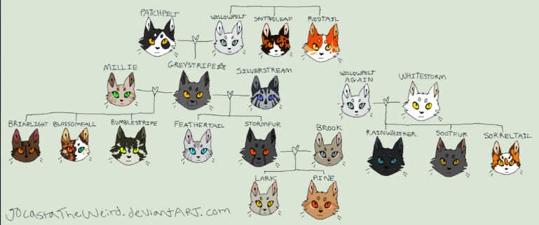 Warrior cats - Family tree's
